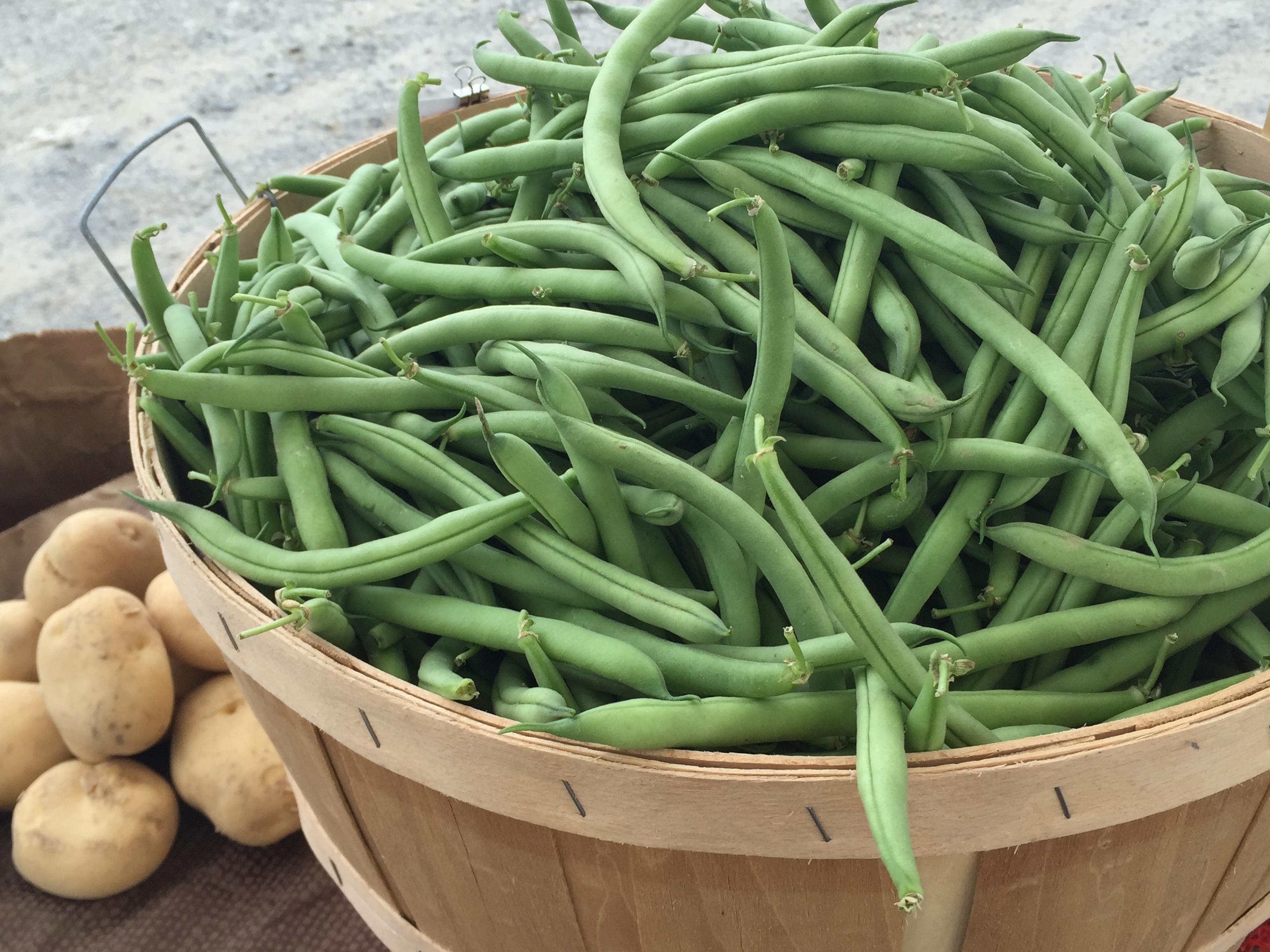 farm howland stand produce (10)