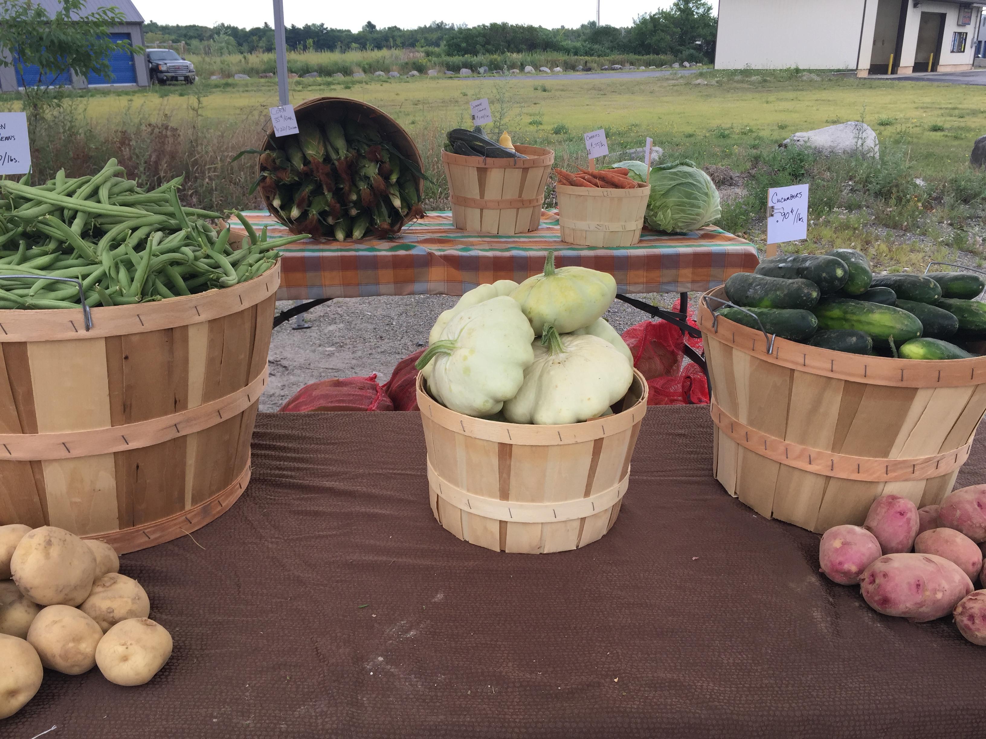 farm howland stand produce (11)