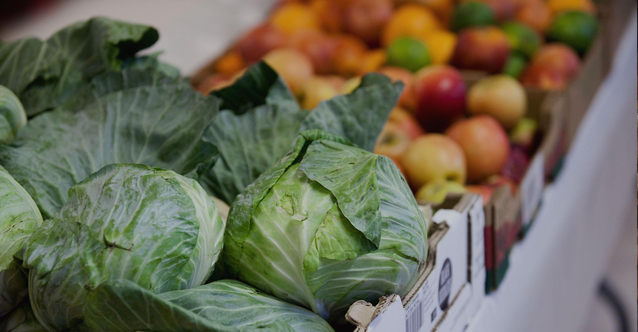 Partner Agency | Ending Hunger in Maine | Good Shepherd Food