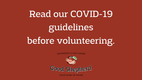 Volunteer information box about COVID-19 guidelines
